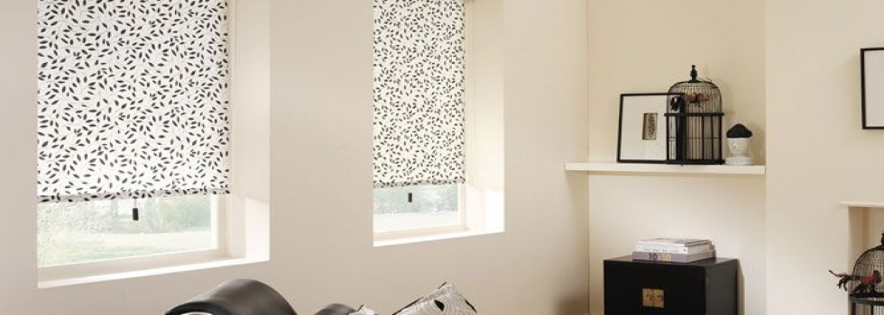 blinds and shutters Roller Blinds Abbotsbury